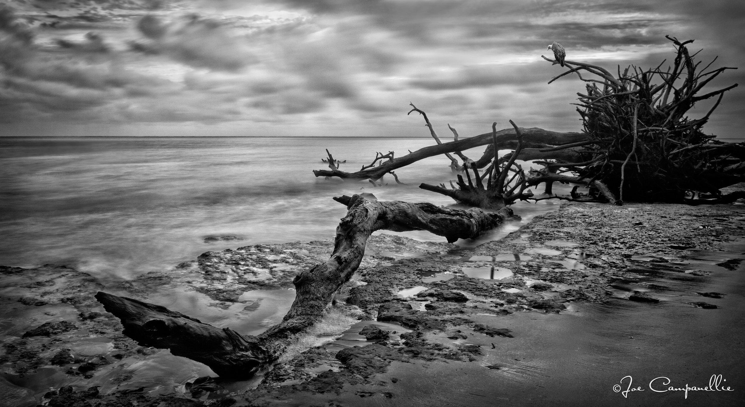 Boneyard Beach © Joe Campanellie