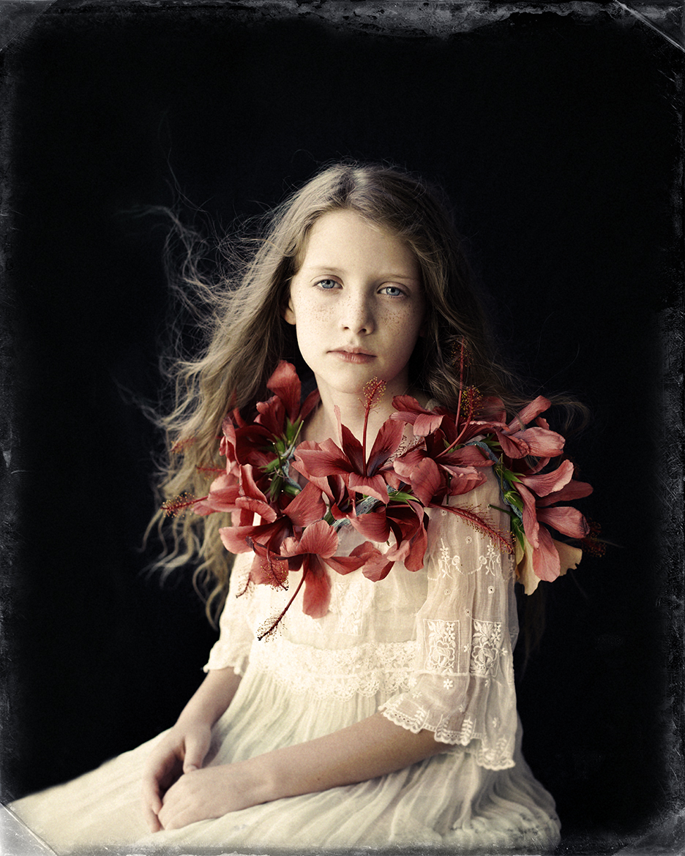 sara-hibiscus-final.jpg
