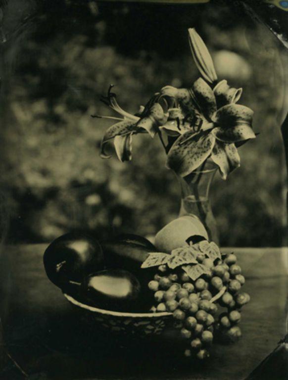 Fruit_Flowers_Alumitype_Quarter_Plate029.jpg