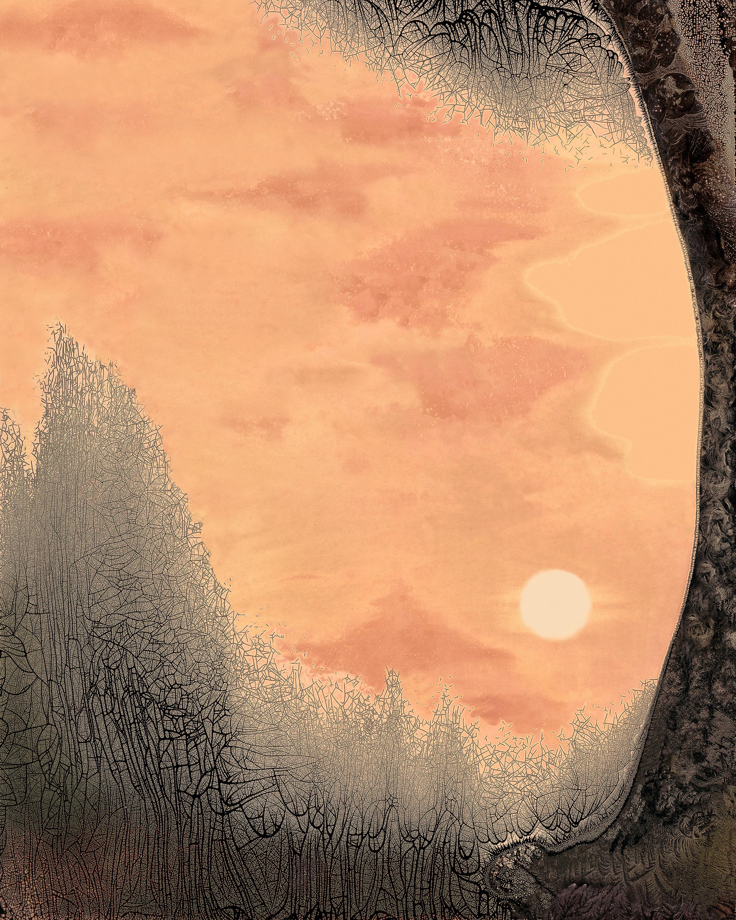 9. Sunset 20 x 16 (2016).jpg