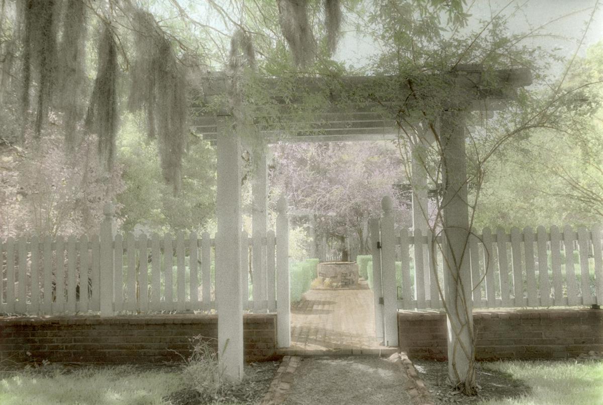 Garden at Oakley House ©Harriet Blum