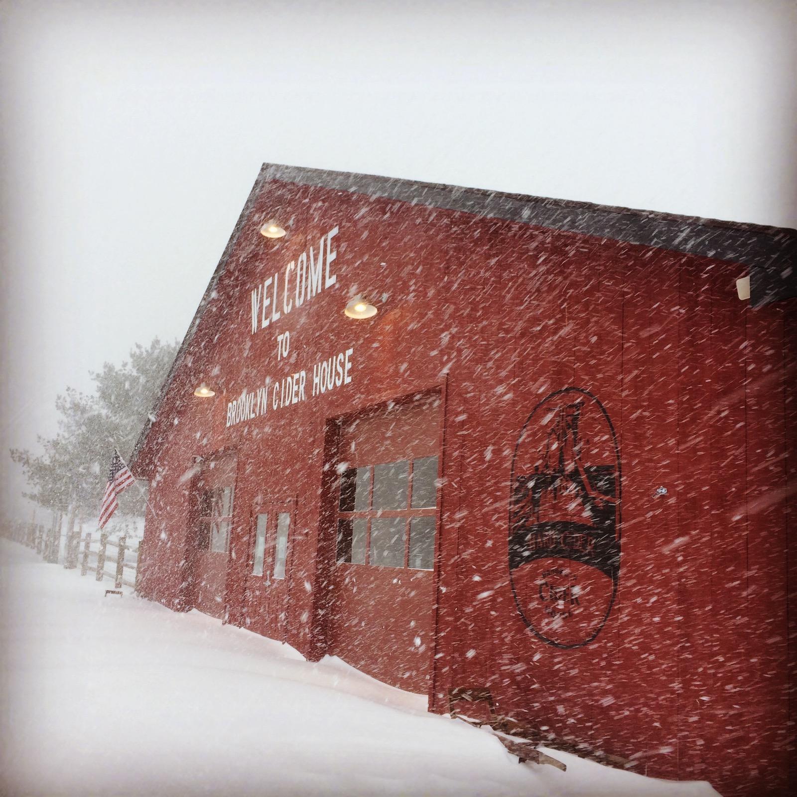farm stand in blizzard.jpg