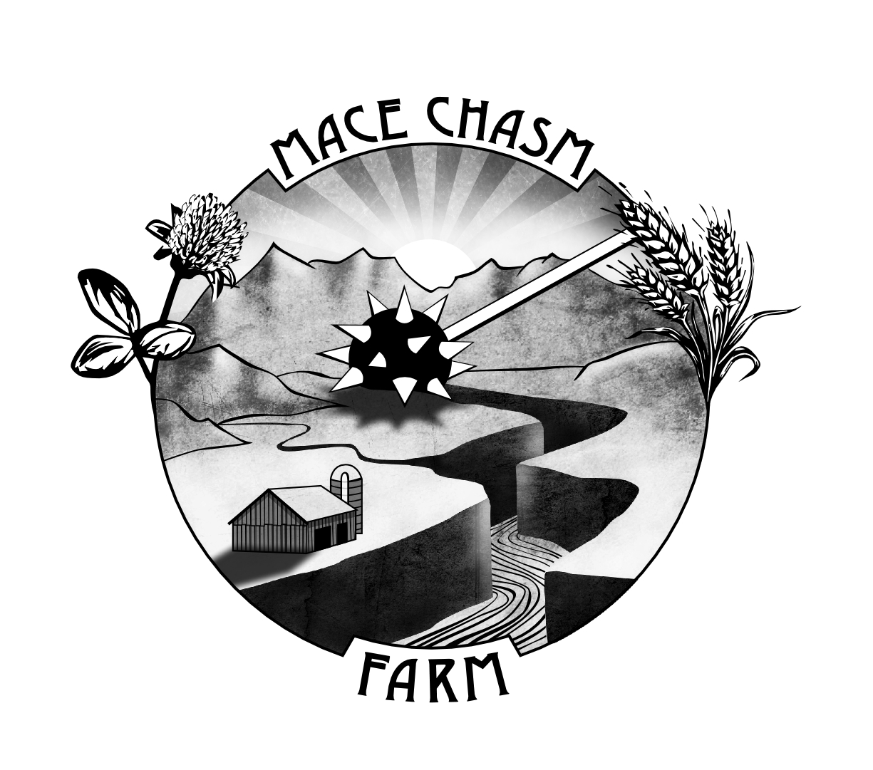 mace chasm.jpg