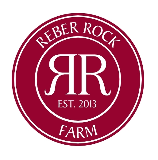 reberrock.jpg