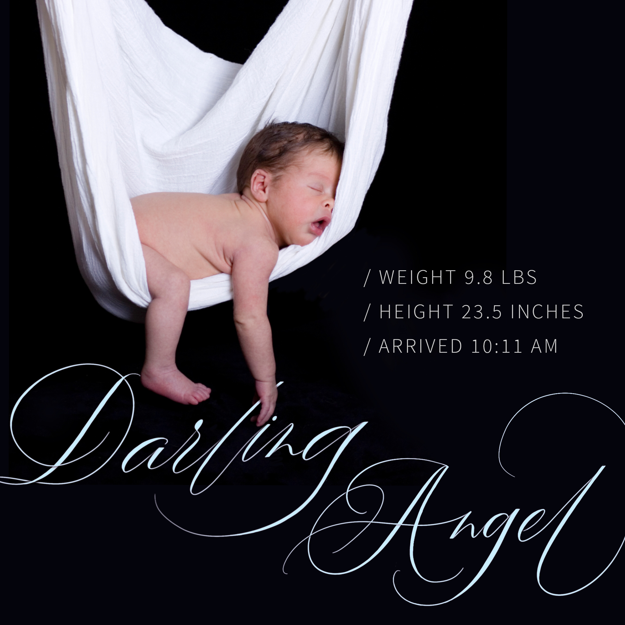 Darling-Angel-Picture-2-(2160px-x-2160px).jpg