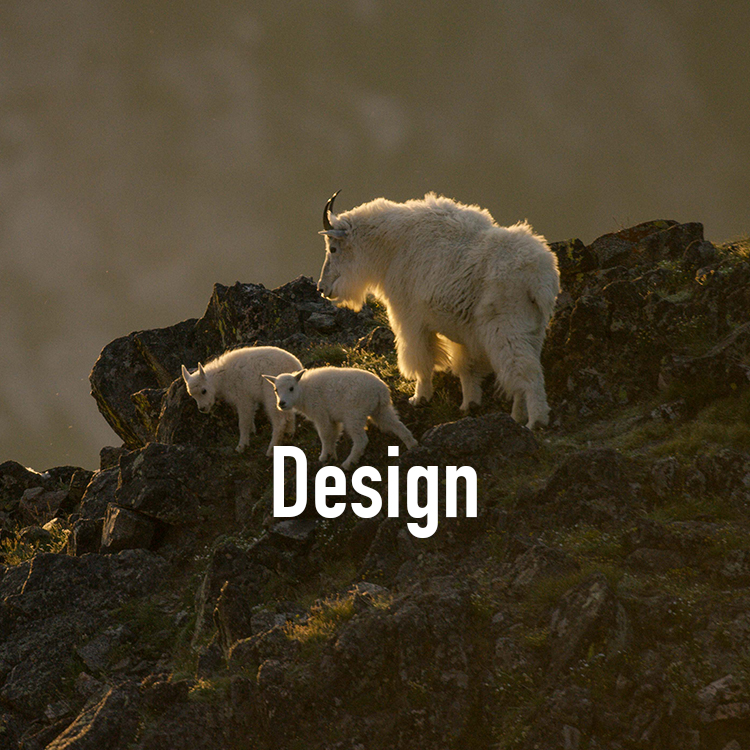 DesignGOATS.jpg