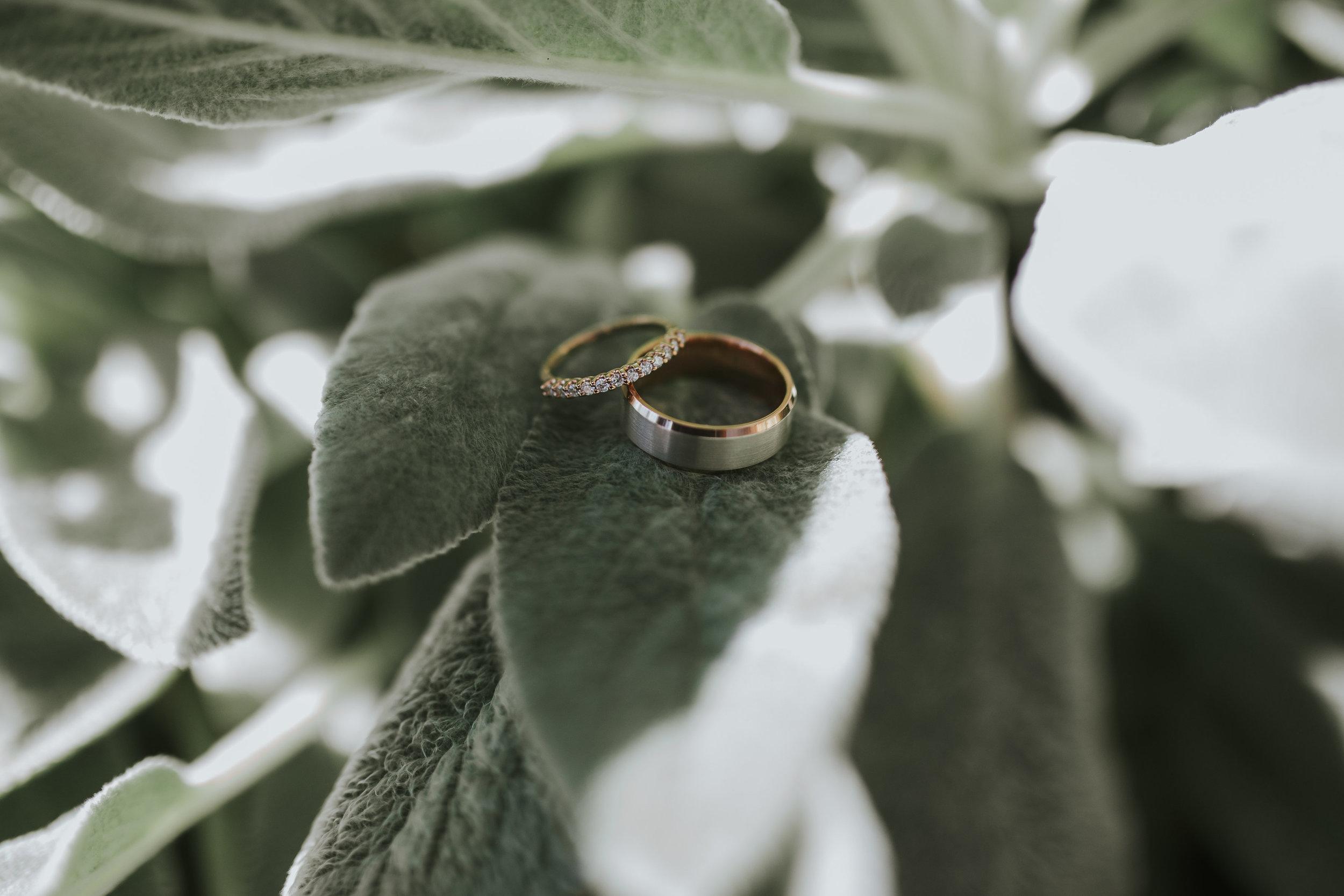 nb-wedding-046.jpg
