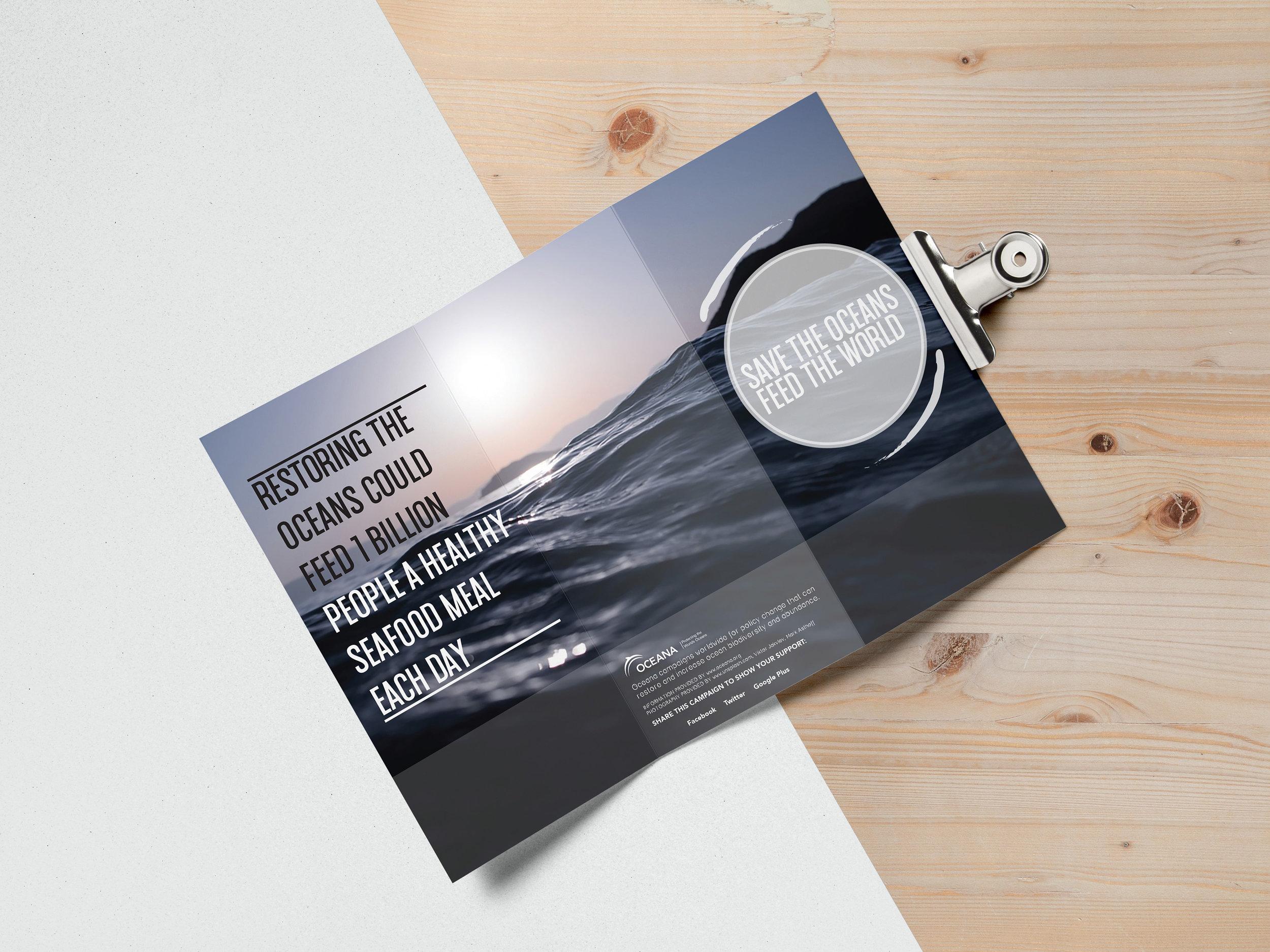 brochuremockupback.jpg