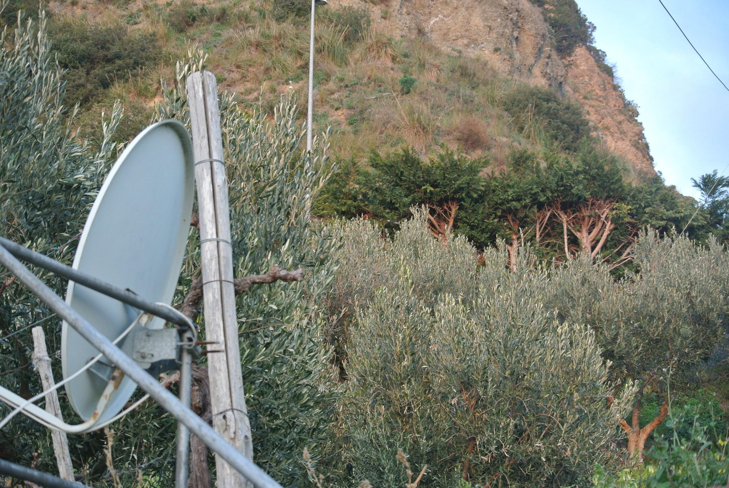 The hills surrounding. Longobardi, Italy; 19 February 2019. ©Pamela Kerpius