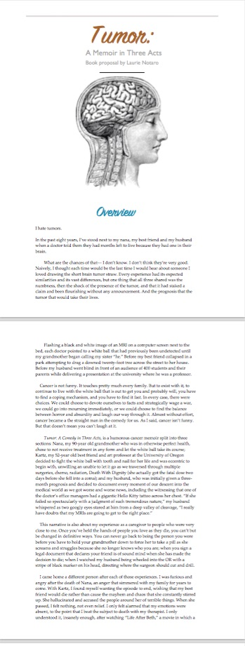 Designed Book Proposal delivered in a PDF file.