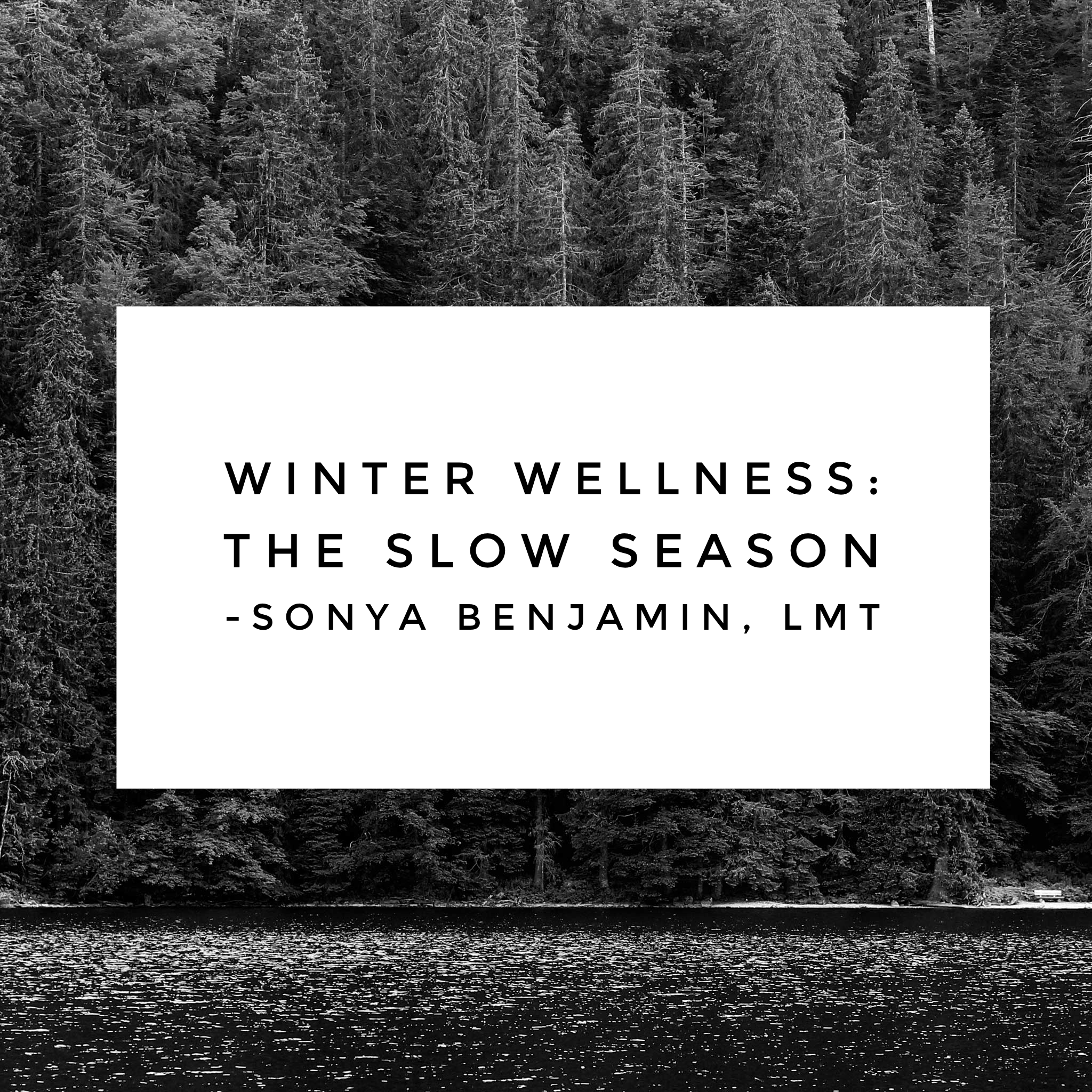 winter wellness blog pic.png
