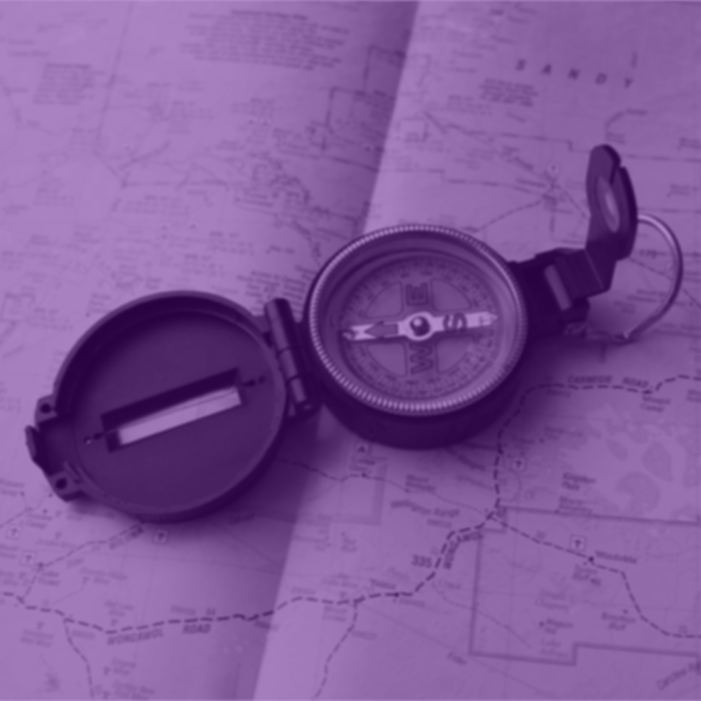 Choose a direction for your business to travel