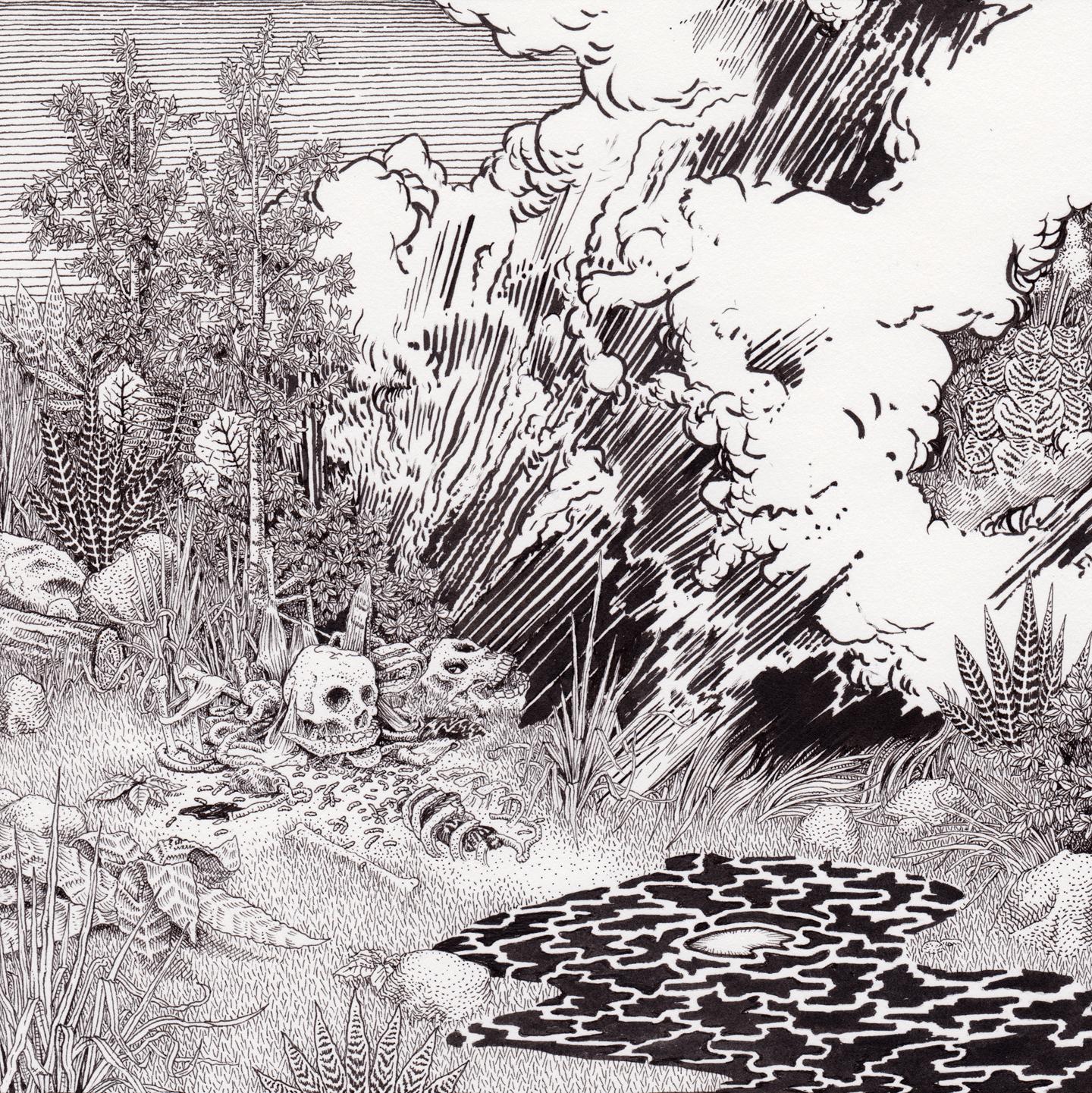 """Black Meadow, 7.5"""" x 7.5"""", pen on paper"""