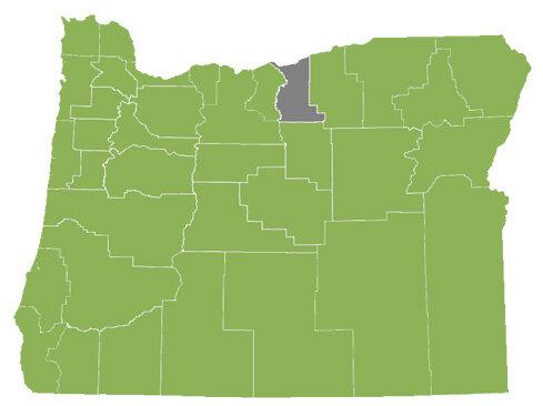 Oregon-Counties---2012-2019.jpg