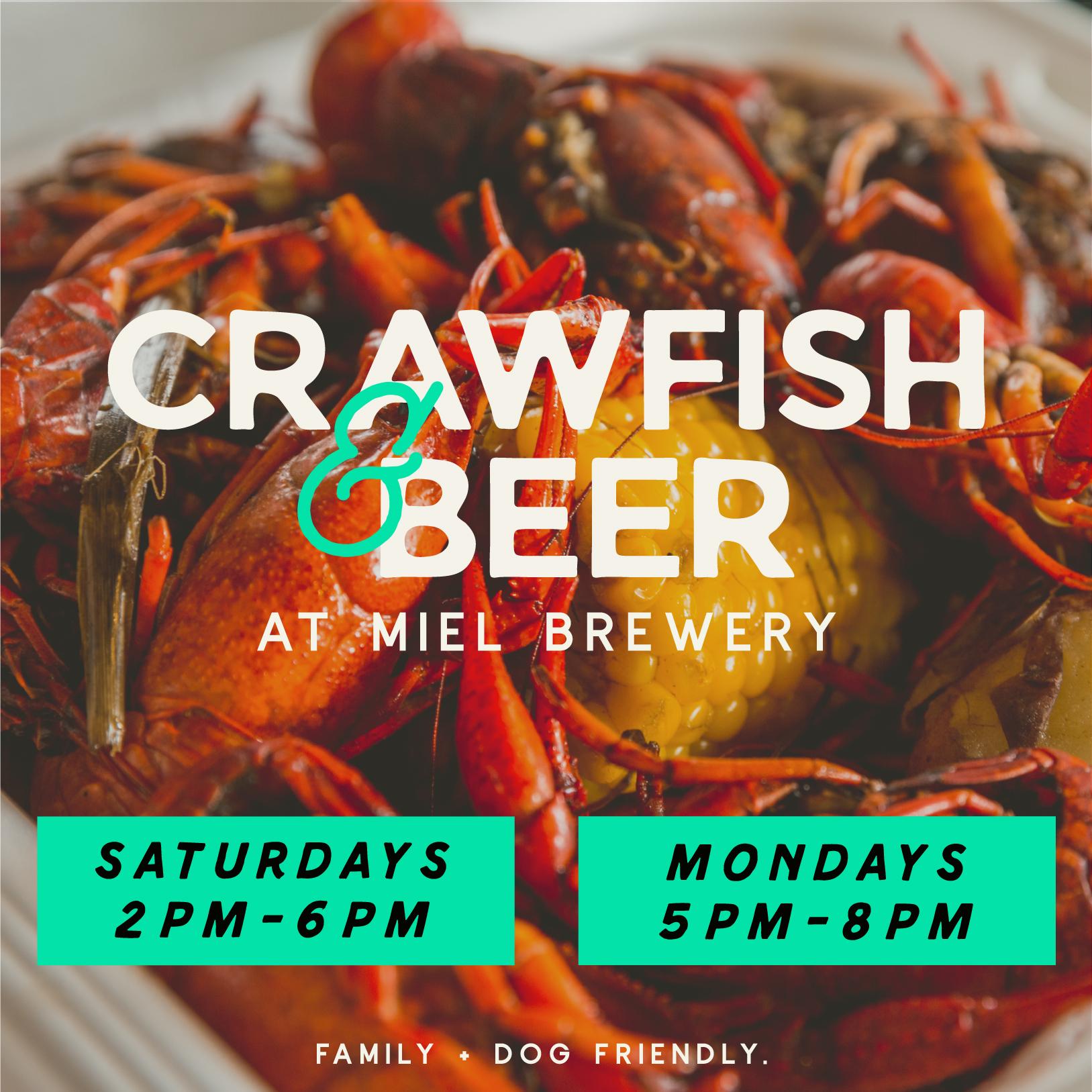 Miel Brewery_New Orleans_Food_Scramuzzas Seafood boil