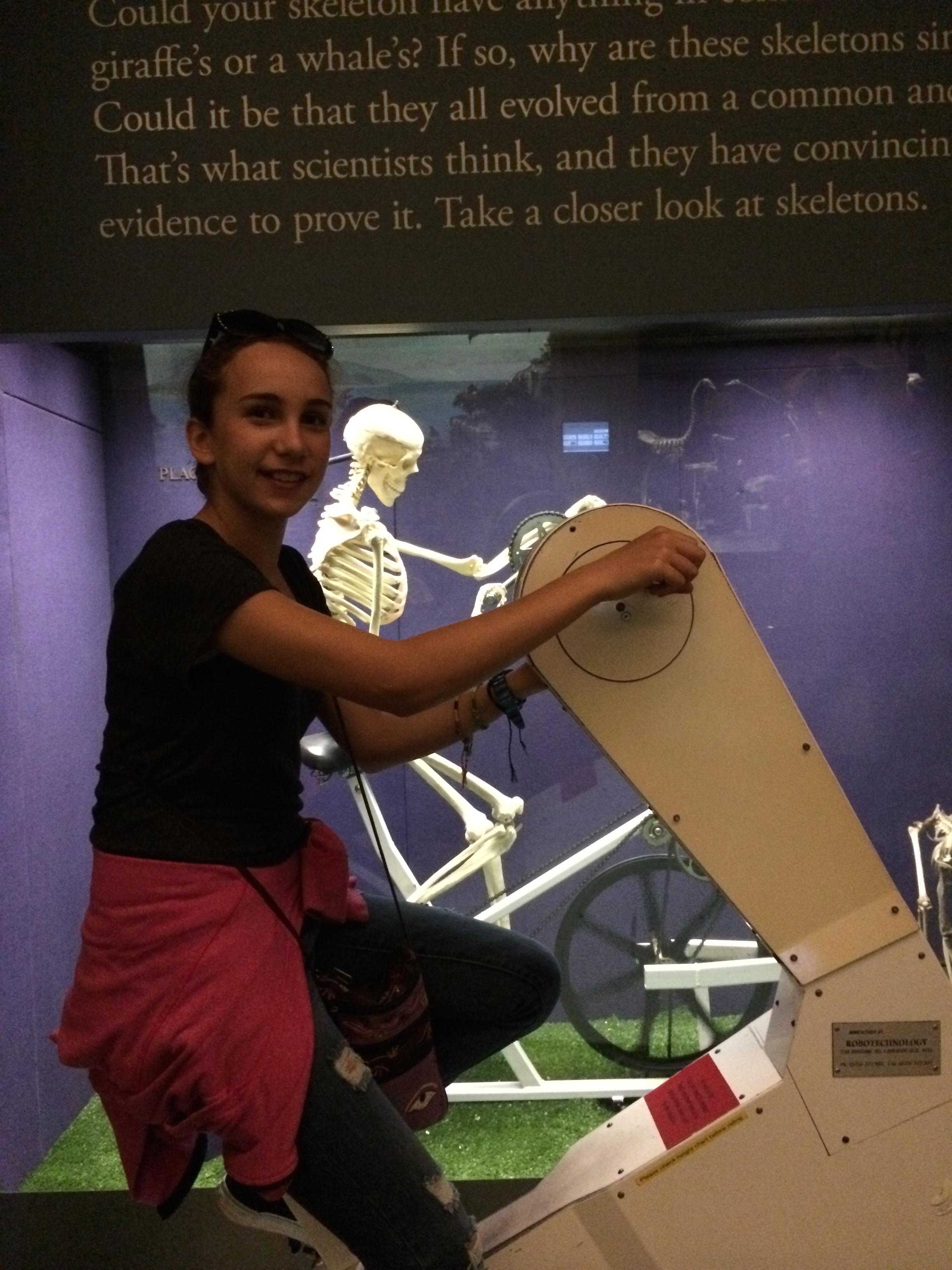 australianmuseum1.jpg