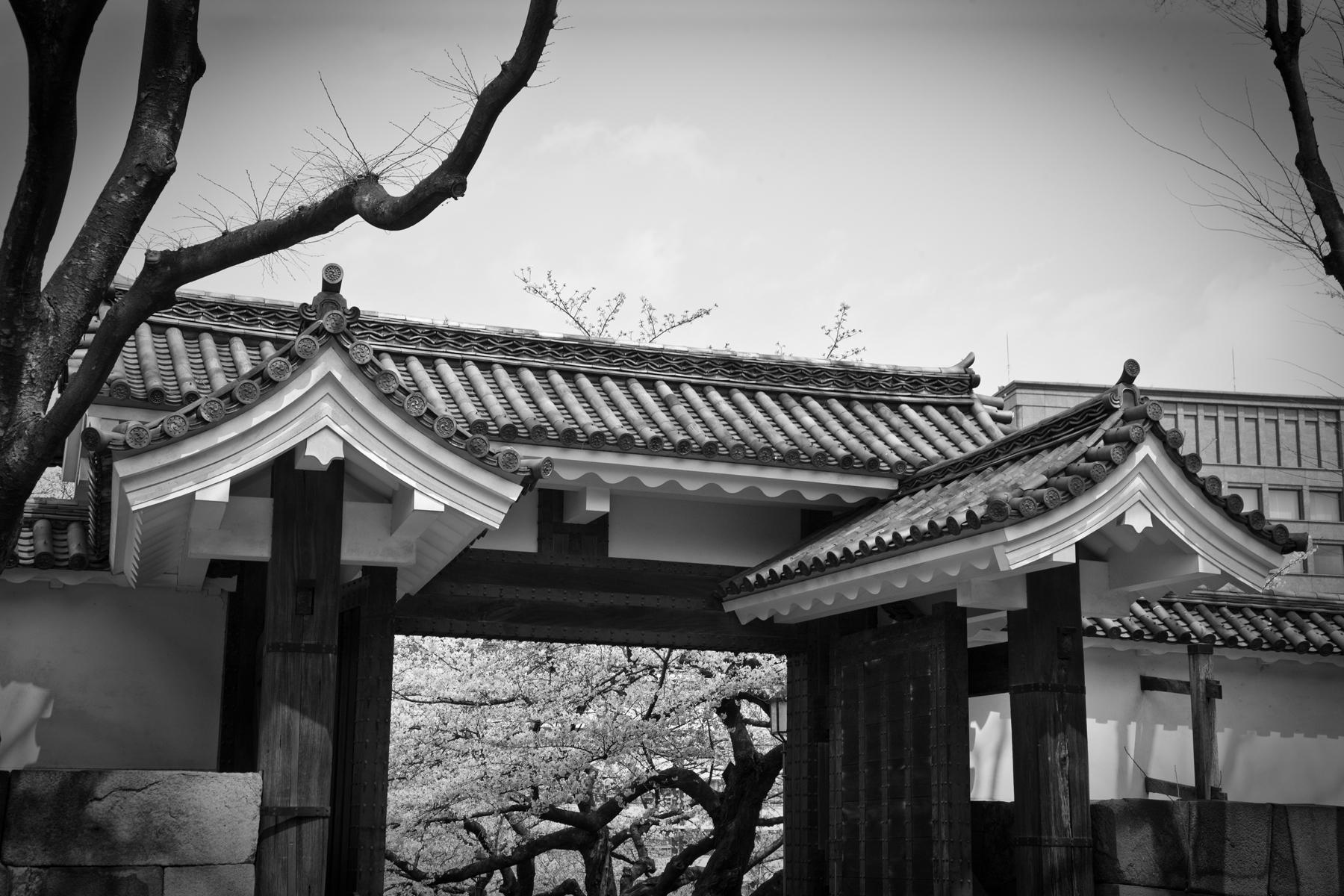 Asia_Trip-8417.jpg