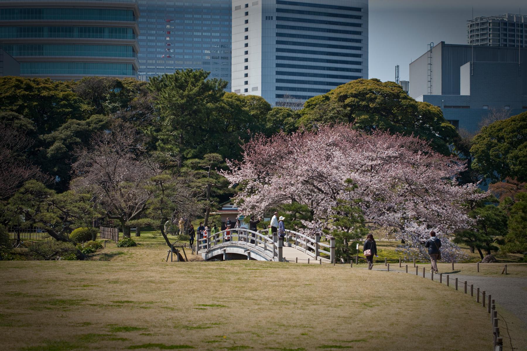 Asia_Trip-8820.jpg