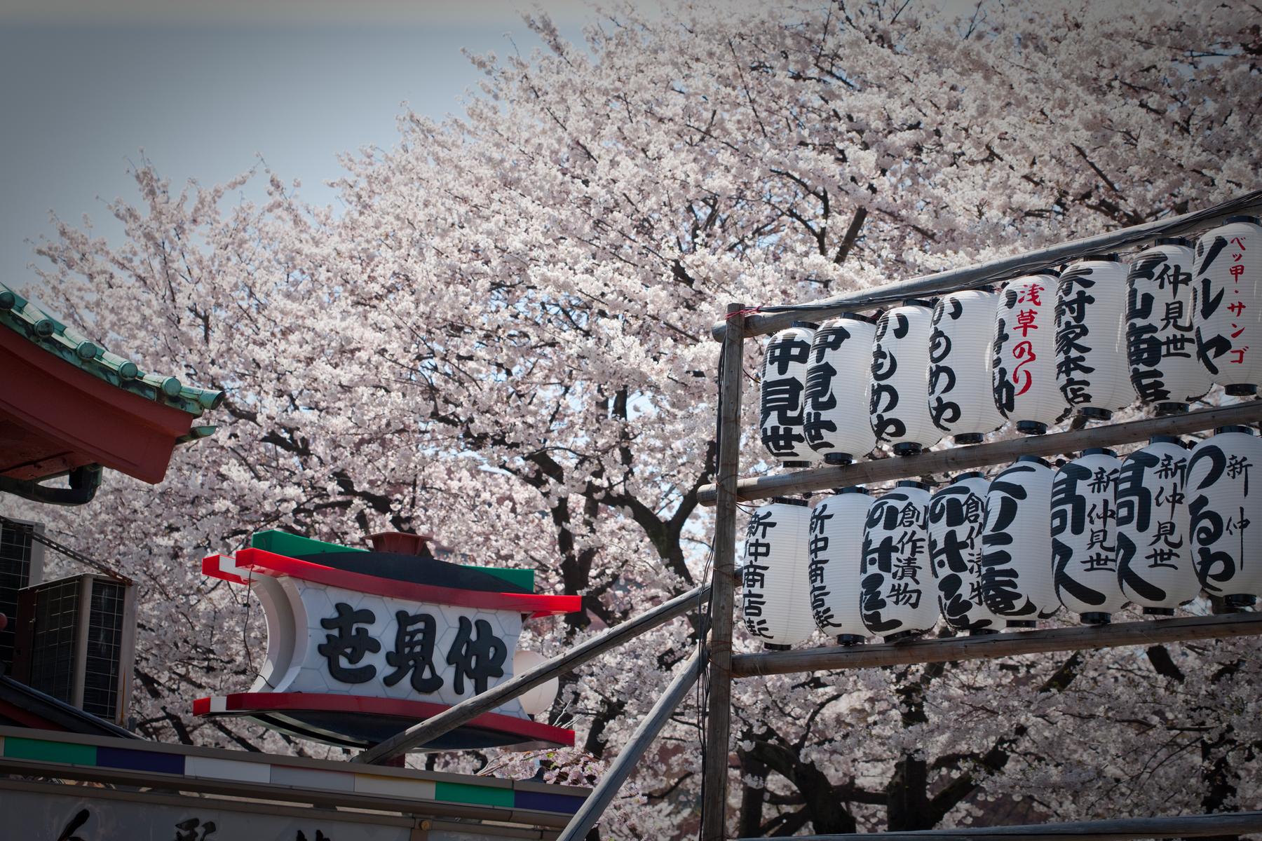 Asia_Trip-9018.jpg