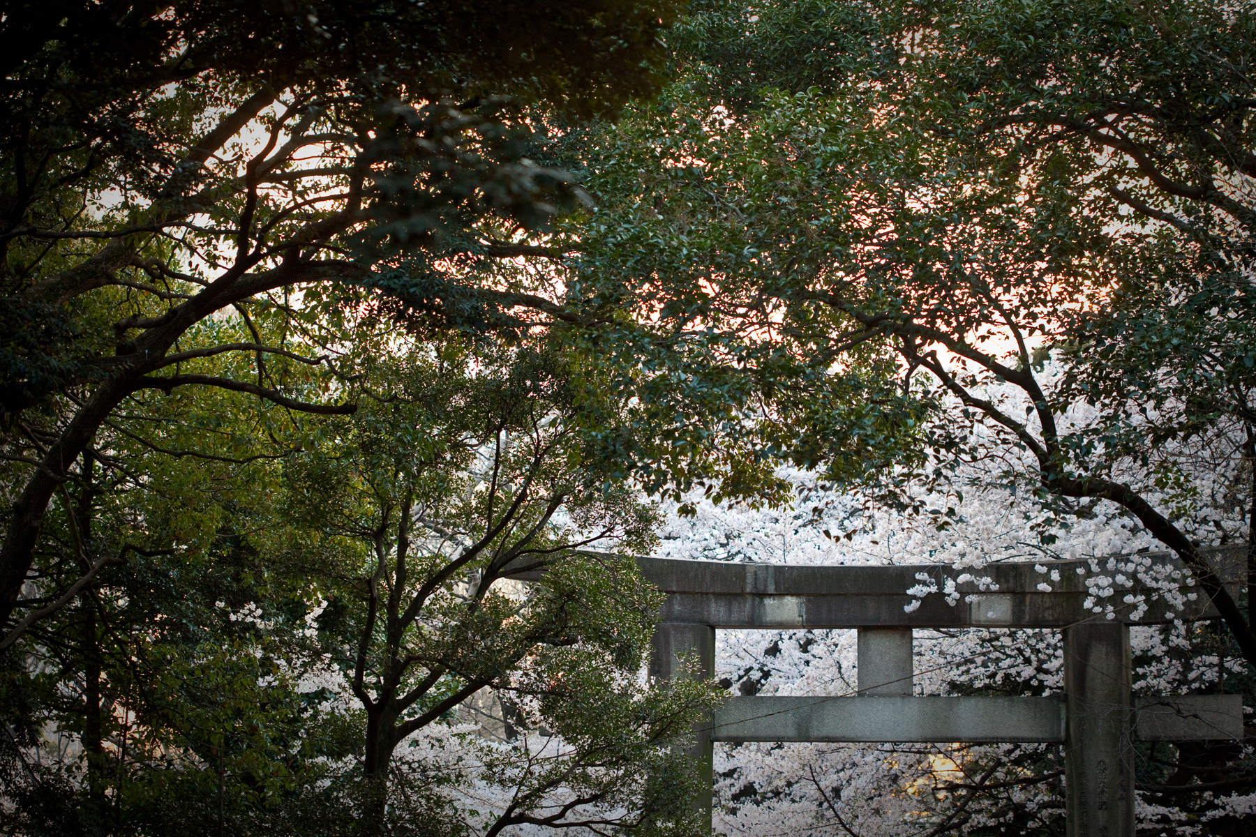 Asia_Trip-9149.jpg