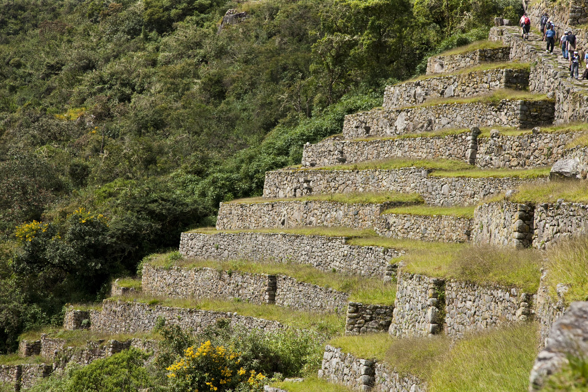 Machu Picchu-125.jpg