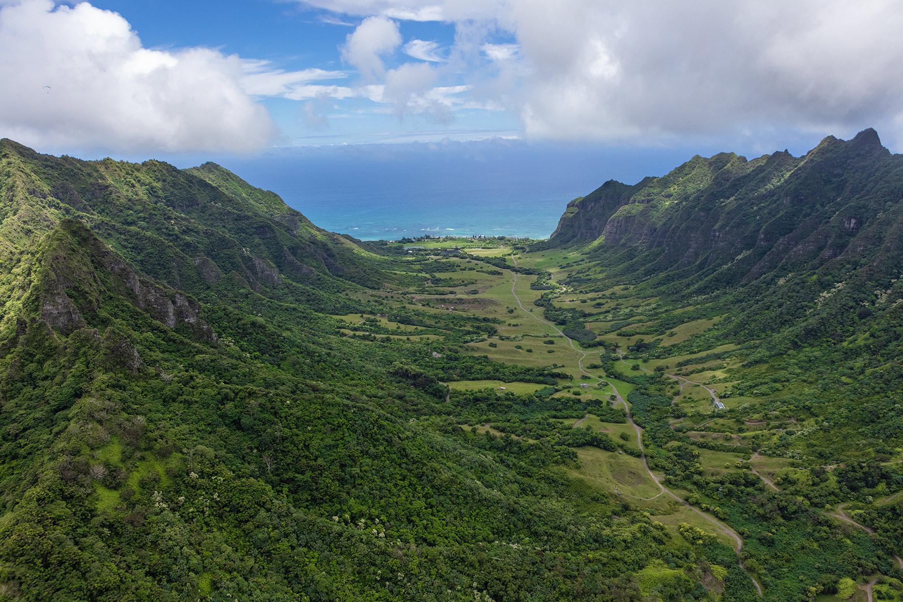 Honolulu_2019-1035.jpg