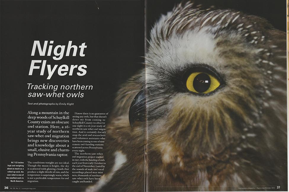 owl_magazine.jpg