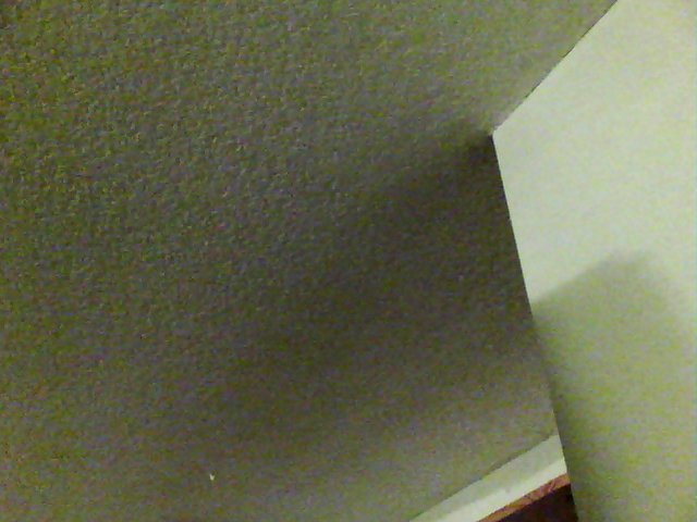 Ceiling from an inspection.  This is what you see .   This is ALSO what other inspectors see  .