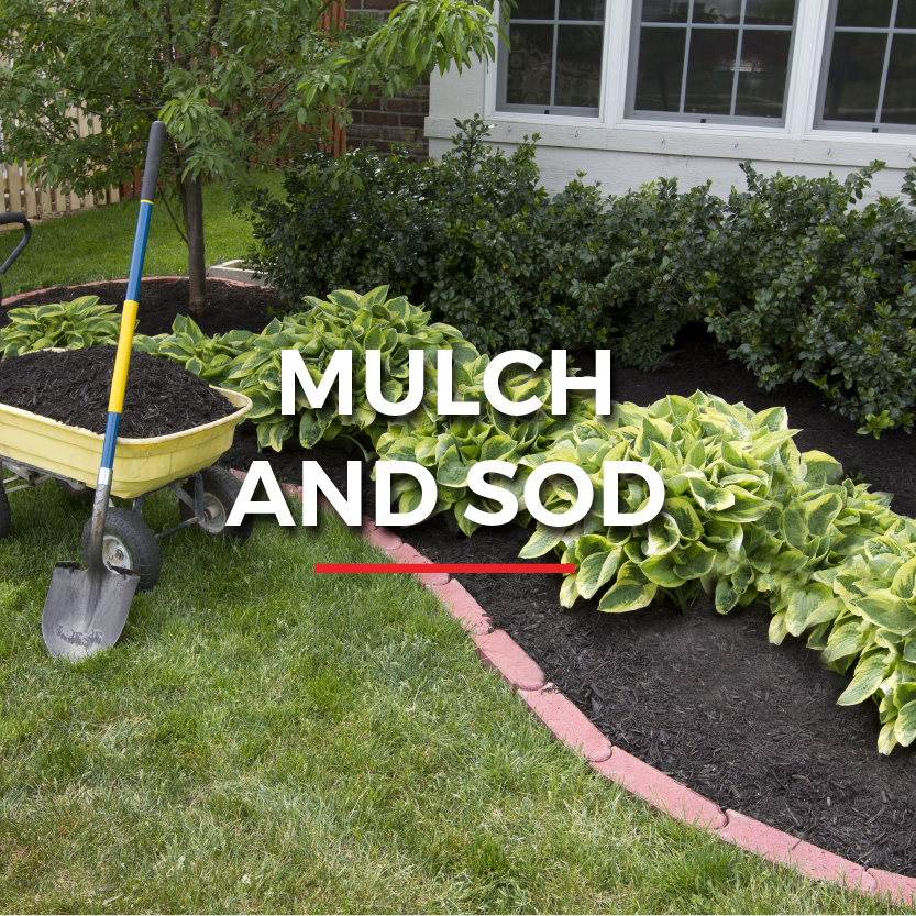 LL_Website graphics_mulch & sod projects.png
