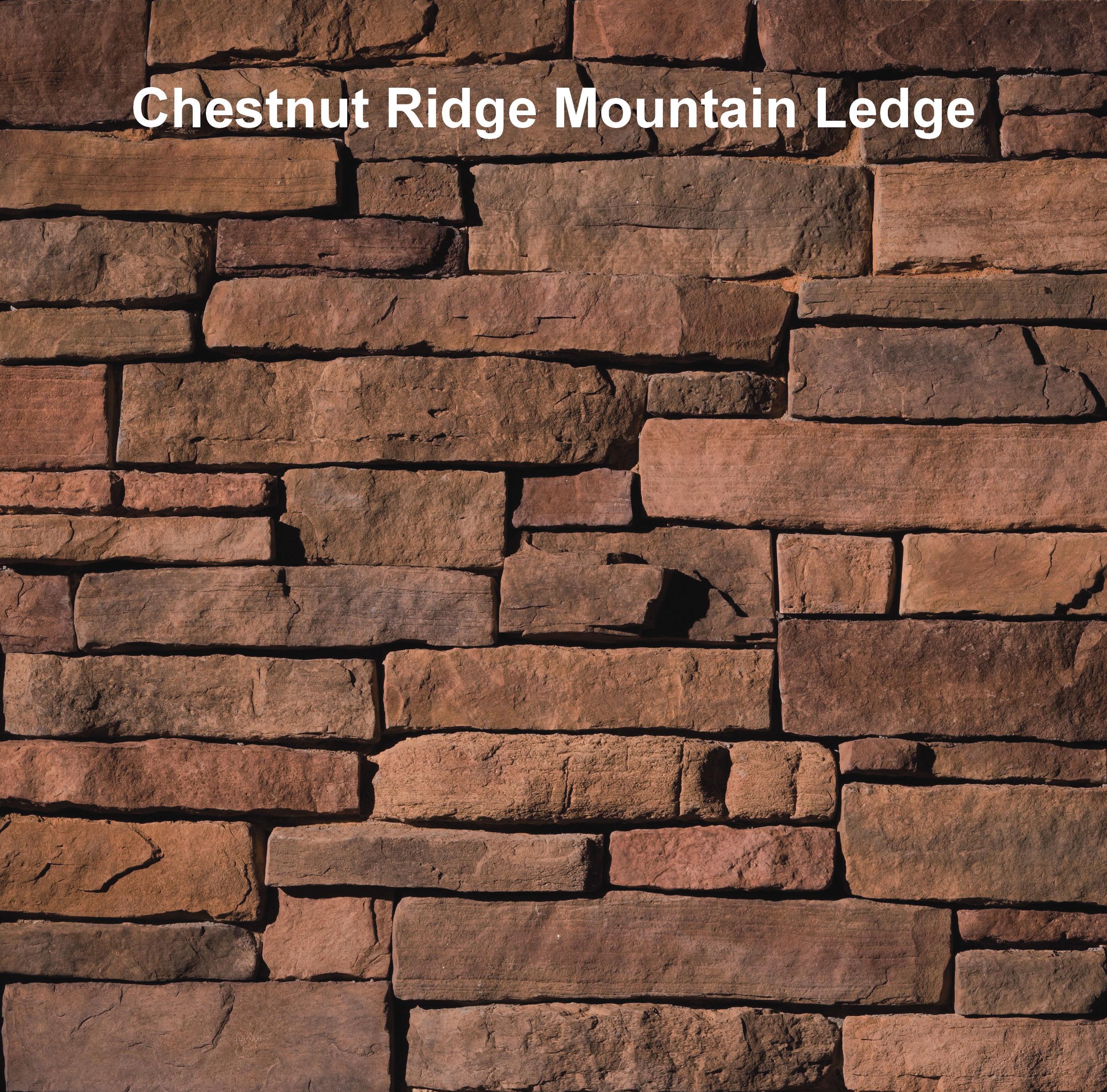 ES_Mountain Ledge_Chestnut Ridge_profile_east.jpg