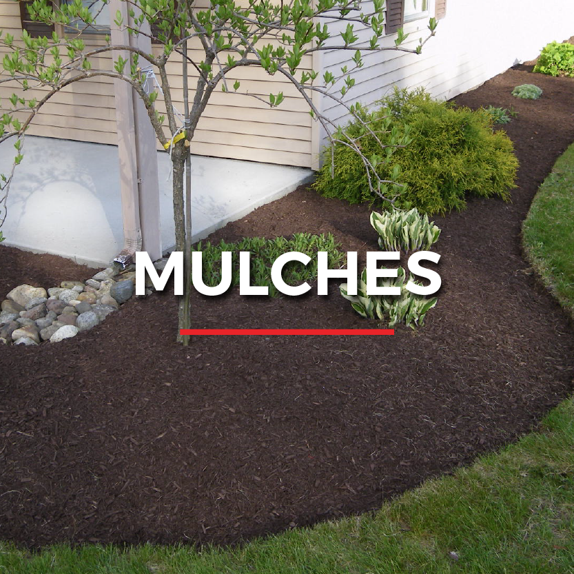 LL_Website graphics_mulches.png