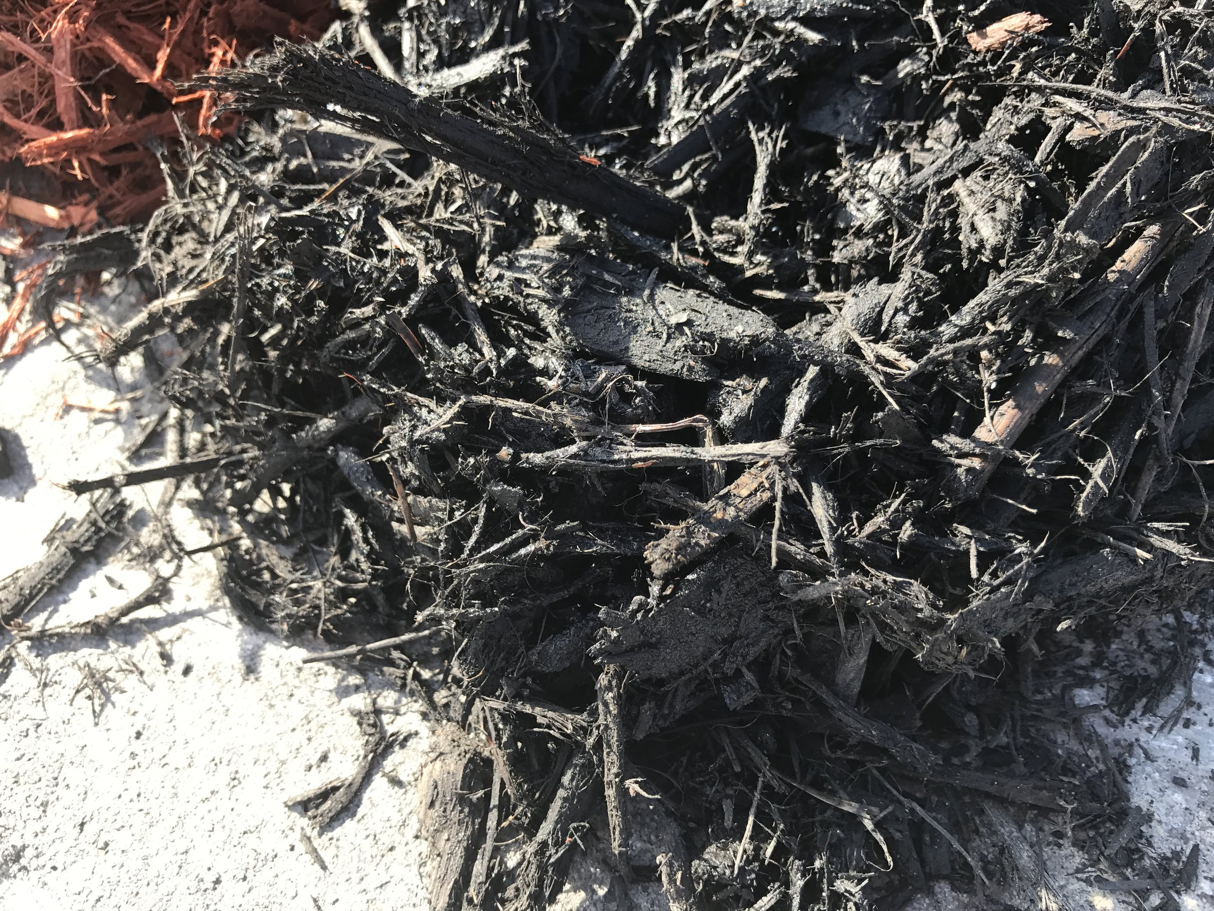 Black Mulch Texture