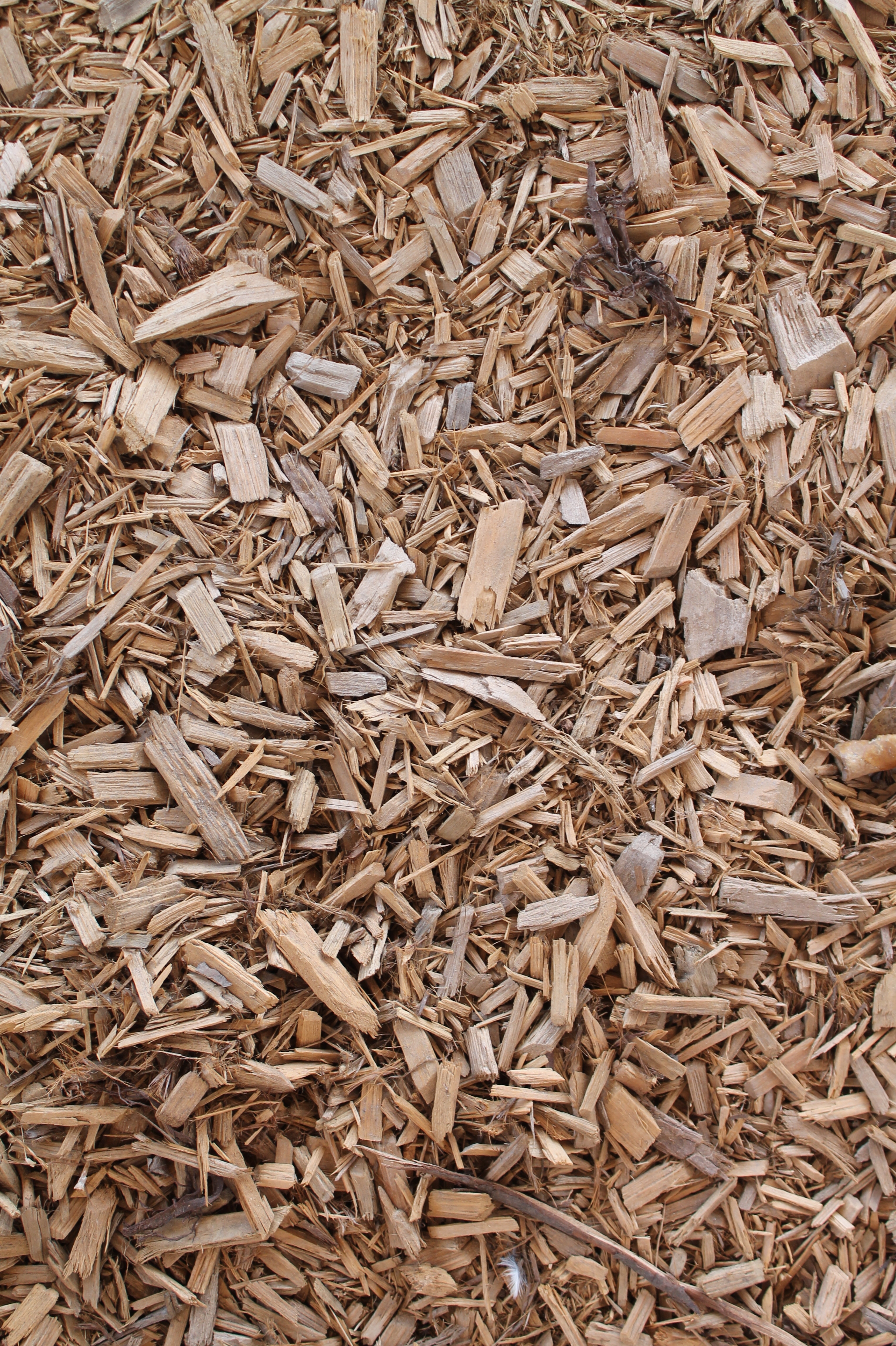 Kid Safe Playground Mulch
