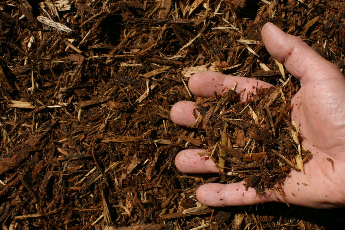 Natural Mulch Texture