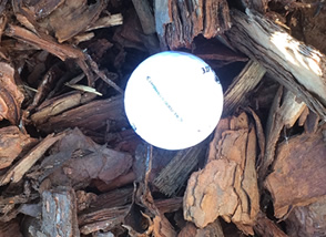 Pine Bark Medium Nuggets
