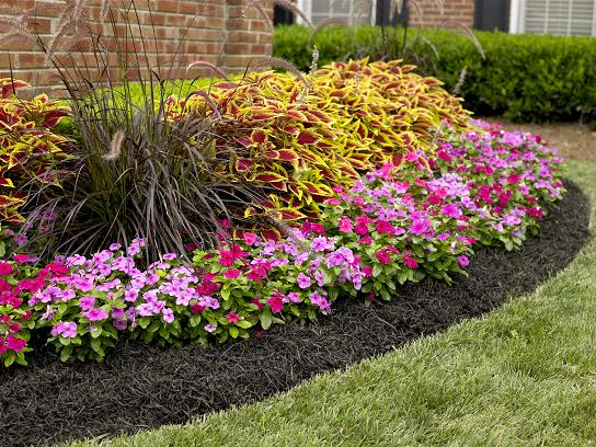 Touch up - Freshen your beds up one last time before your guest arrive. Re-mulch or add more gravel so those winter plants really pop!