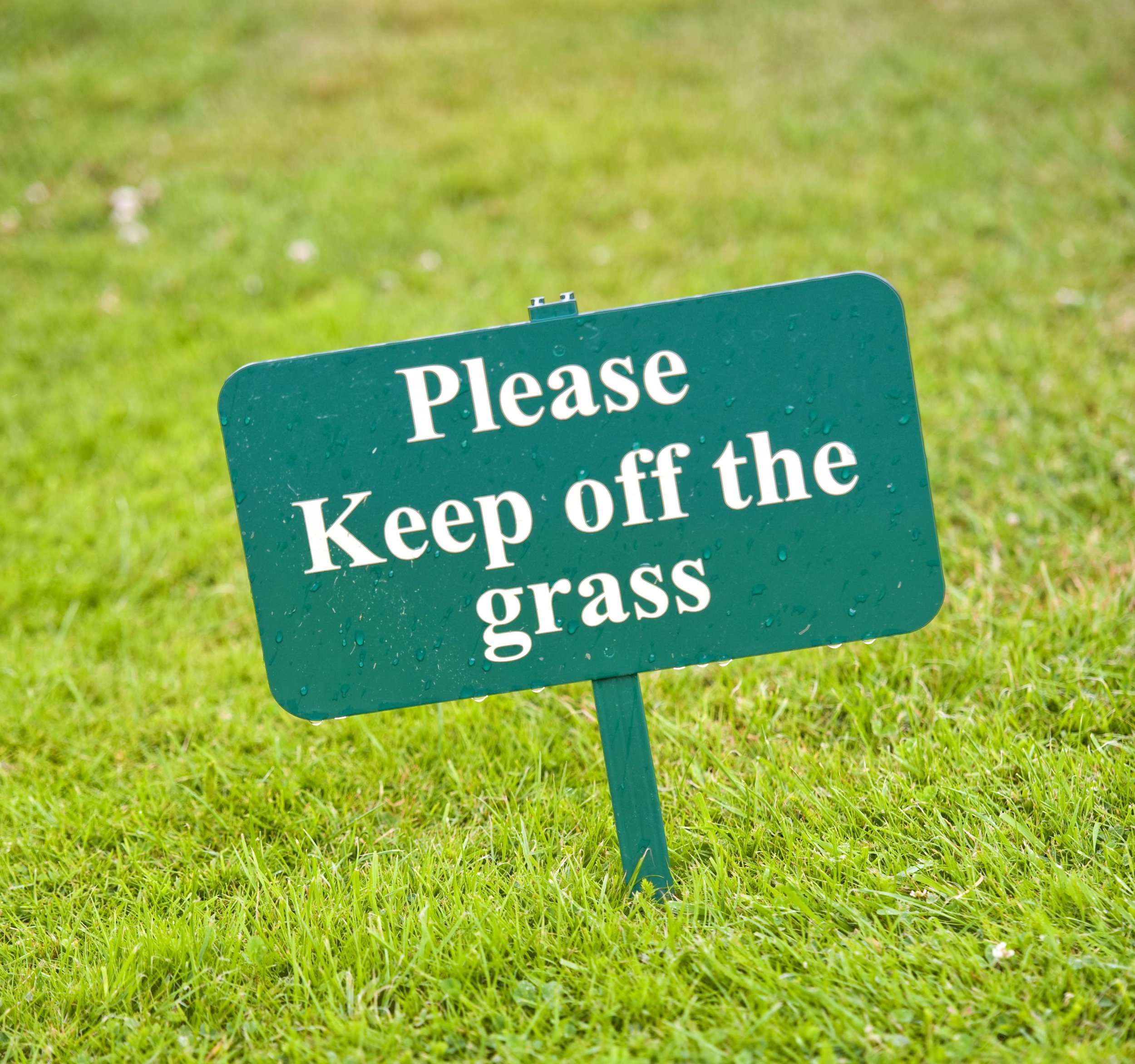 Stay OFF! - Keep the foot traffic to a minimum while the ground is still cold or frozen. It could damage the grass and leave it open to disease and other problems.