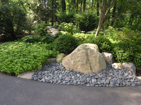 Rain-garden-with-shade-loving-plants-for-natural-woods.jpg