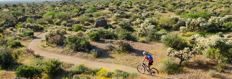 Mountain-Biking-Tour-Banner.jpg