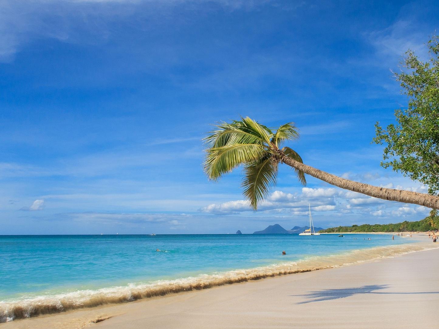 Martinique, October 2019 - DIVERSITY + TOGETHERNESS