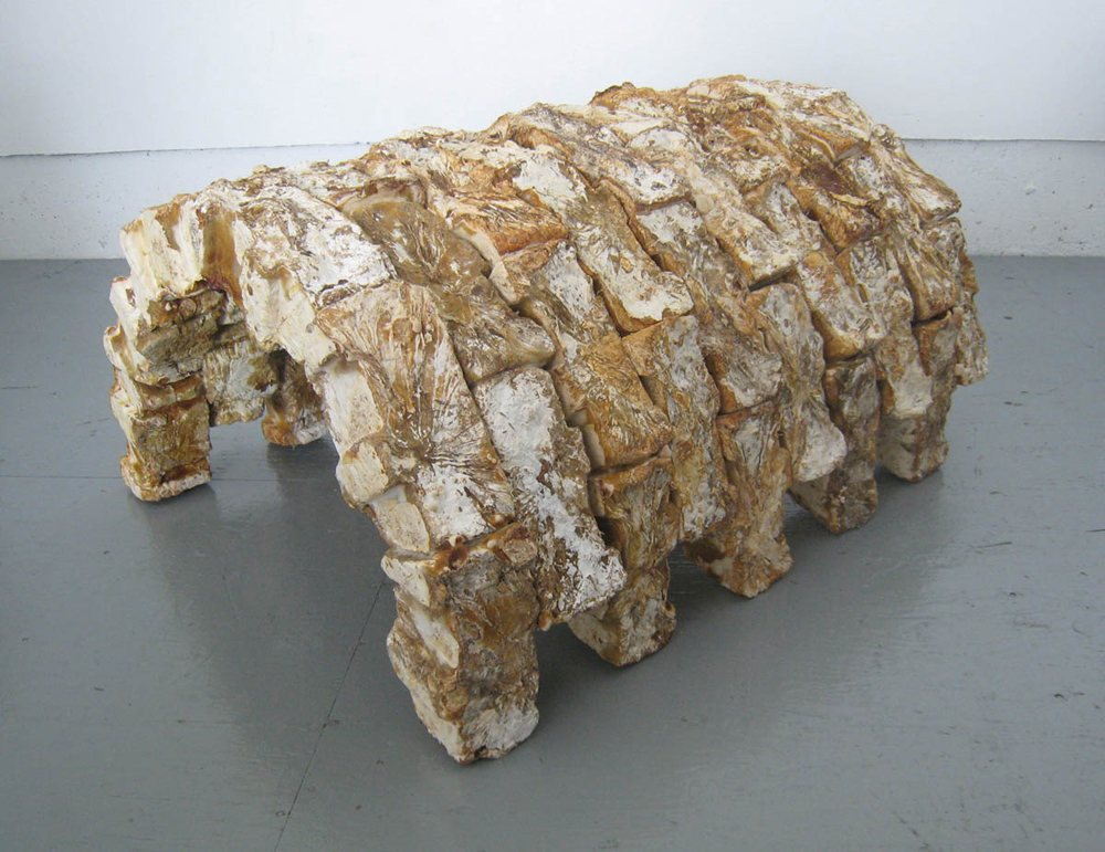 Phil Ross and Michael Sgambellone, Mycotecture , 2009. Ganoderma lucidum fungus, chopsticks, and glue;28 x 48 x 60 in. Image courtesy of the artist and designer.