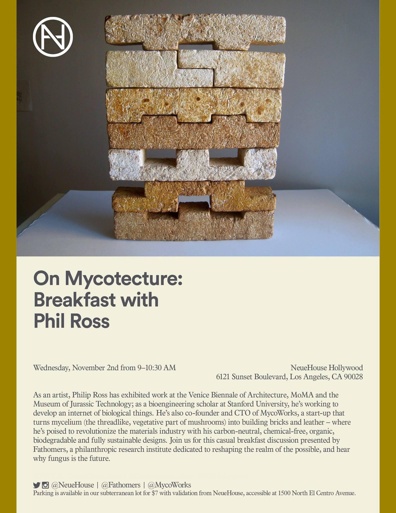 "Mycoworks, ""Fungus Brick"".Fungal mycelium. Image courtesy of Mycoworks."