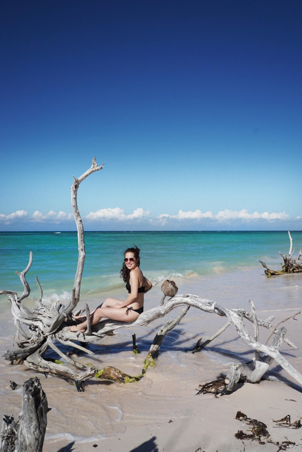 Take a day trip to Cayo Jutias