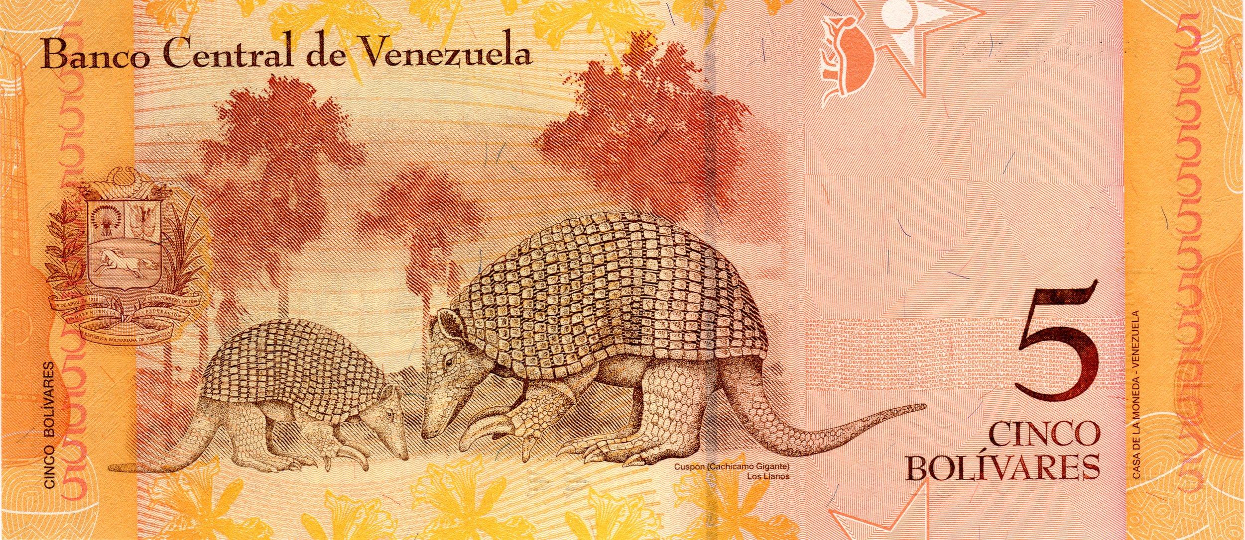 Banknotes need more Armadillo!