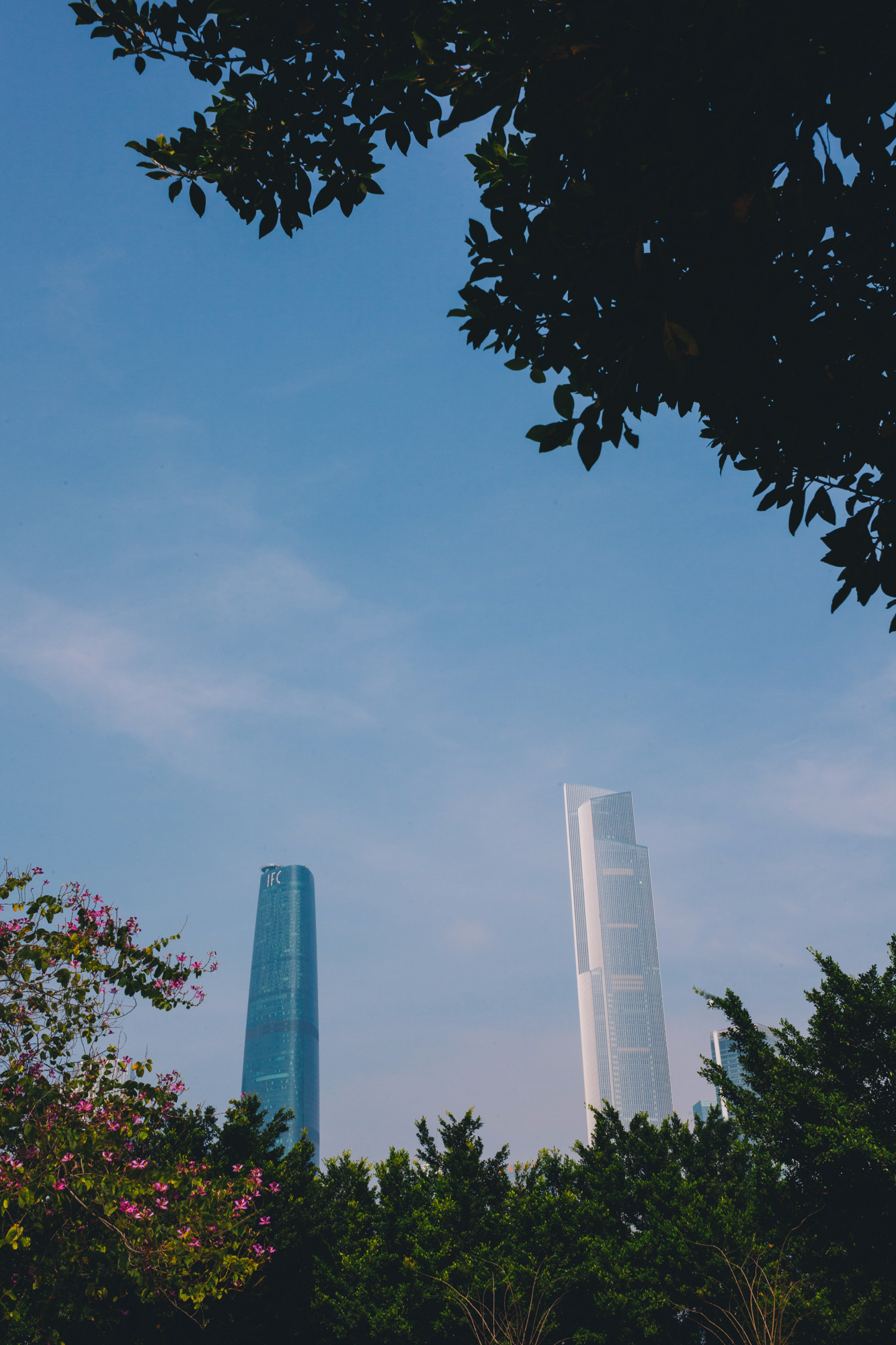 webguangzhou-5.jpg