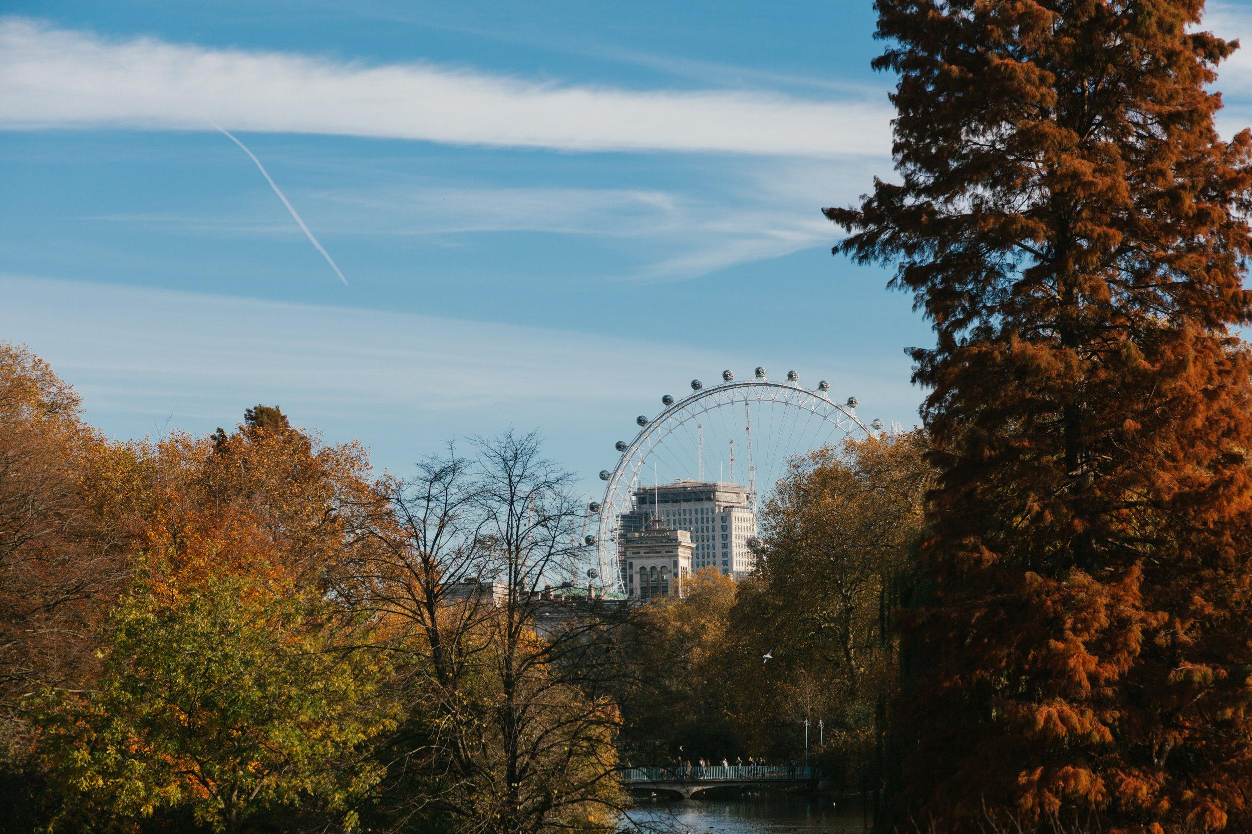 londonweb-8.jpg