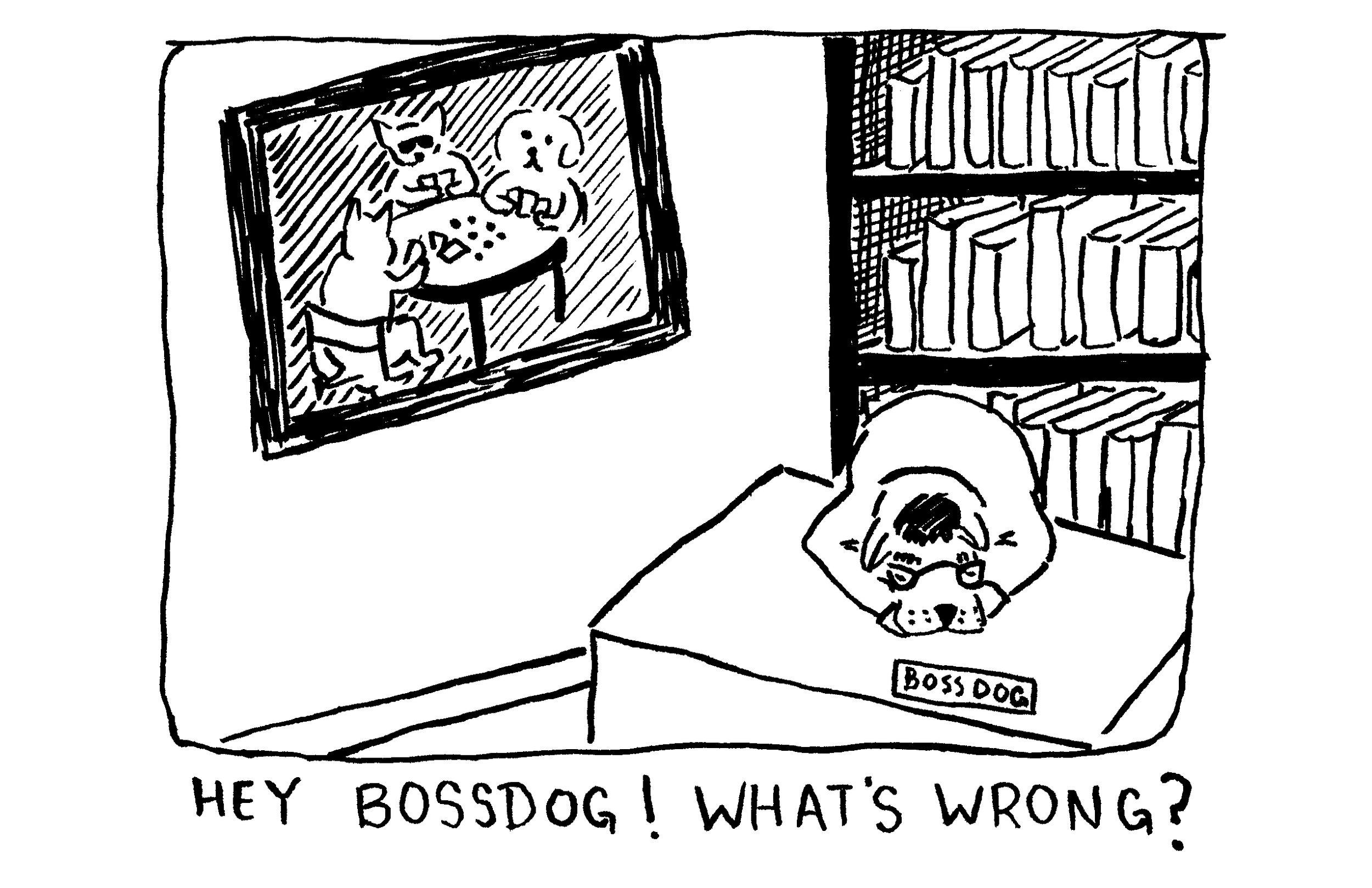 04_bossdog.jpg
