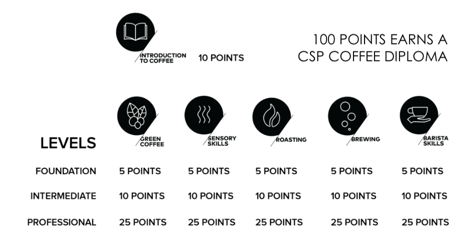 CSP Diploma.png