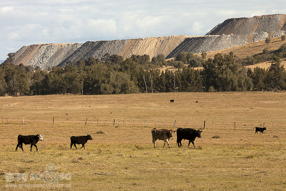 Farming in Hebden, NSW