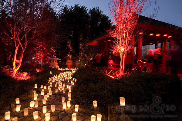 Candles at the Nara Festival